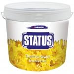STATUS ΠΛΑΣΤΙΚΟ