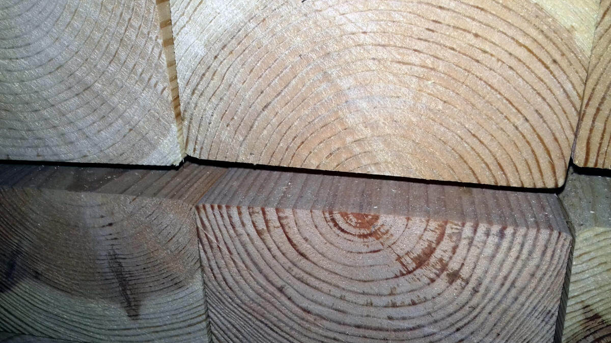 ξυλεία σασίφ καστανιά καραπιπέρης αίγιο αχαία κορινθία