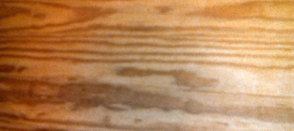 PITSPAIN ksilia masif karapiperis